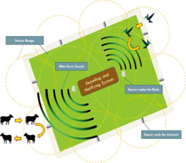 Safe Farming: Development of a Prevention System to Mitigate Vertebrates Crop Raiding