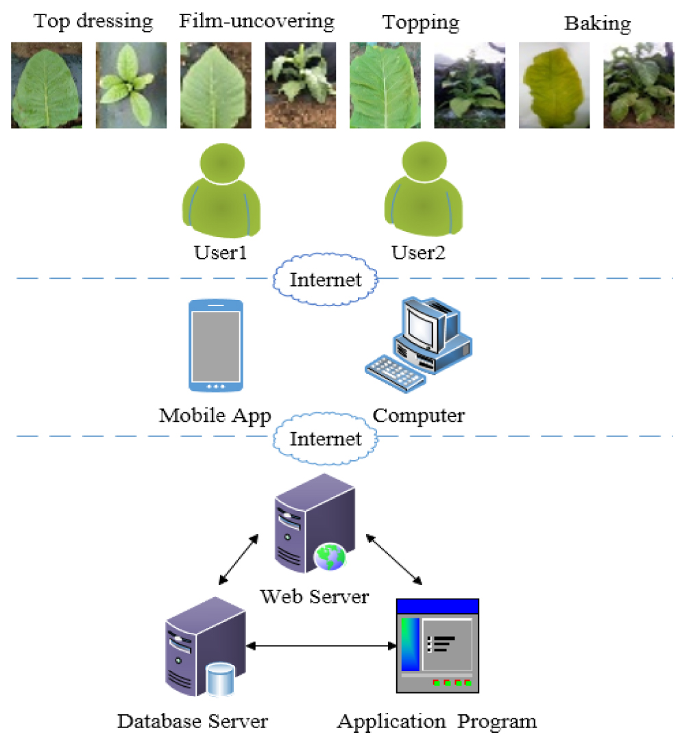A Novel Growth Evaluation System for Tobacco Planting Based on Image Classification
