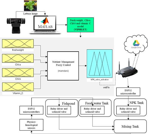 Adaptive Fertigation System Using Hybrid Vision-Based Lettuce Phenotyping and Fuzzy Logic Valve Controller Towards Sustainable Aquaponics