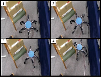 Collision Avoidance Using Contact Information with Multiple Objects by Multi-Leg Robot