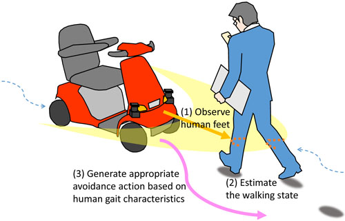 Oncoming Human Avoidance for Autonomous Mobile Robot Based on Gait Characteristics