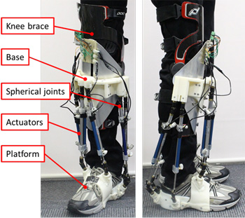 Development of Six-DOF Human Ankle Motion Control Device Using Stewart Platform Structure for Fall Prevention