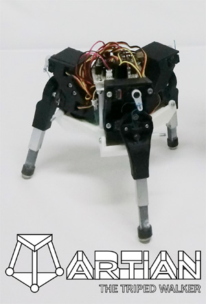 Simplified Triped Robot for Analysis of Three-Dimensional Gait Generation