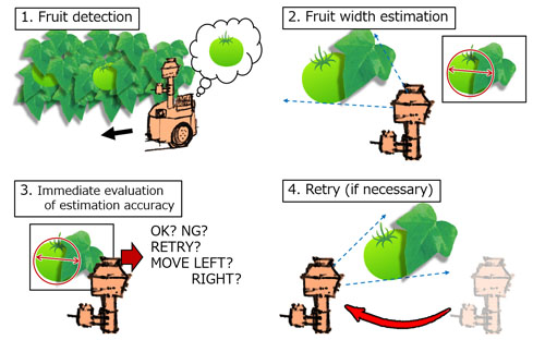 Development of a Tomato Volume Estimating Robot that Autonomously Searches an Appropriate Measurement Position – Basic Feasibility Study Using a Tomato Bed Mock-Up –