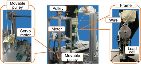 One-DOF Wire-Driven Robot Assisting Both Hip and Knee Flexion Motion