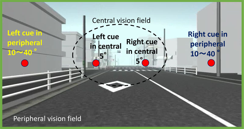 A Driving Simulation Study on Visual Cue Presented in the Peripheral Visual Field for Prompting Driver's Attention