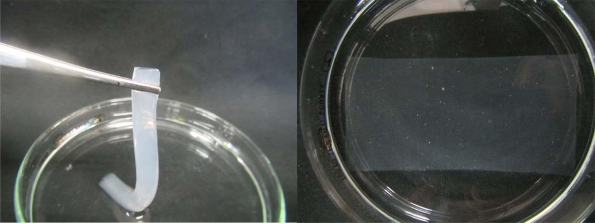 Step Response Characteristics of Anisotropic Gel Actuator Hybridized with Nanosheet Liquid Crystal