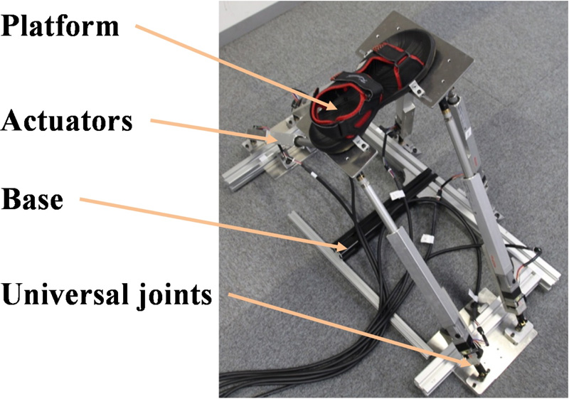 Development of a Rehabilitation and Training Device Considering the Ankle Degree of Freedom