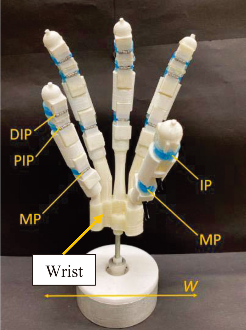 Development of Pneumatically Driven Hand Capable of Grasping Flexible Objects