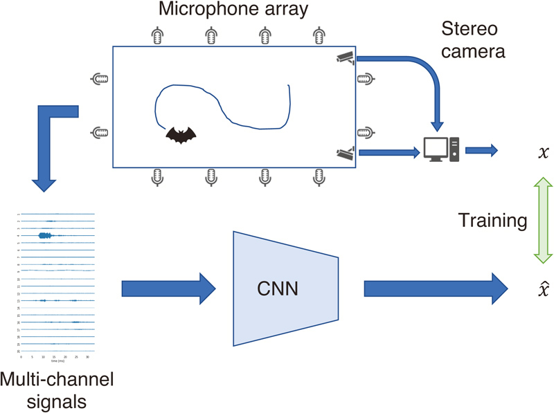 Localization of Flying Bats from Multichannel Audio Signals by Estimating Location Map with Convolutional Neural Networks