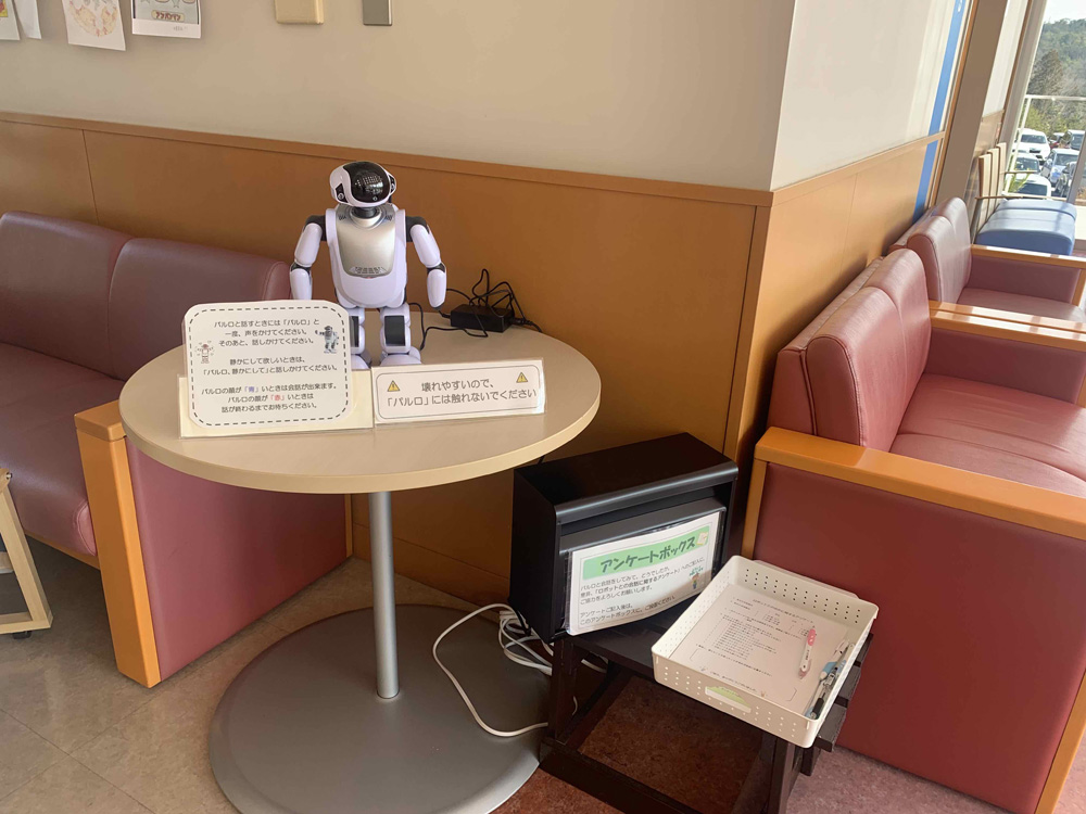 Impression Survey and Grounded Theory Analysis of the Development of Medication Support Robots for Patients with Schizophrenia