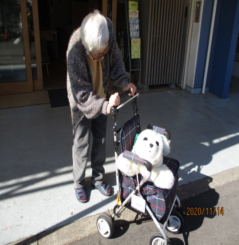 Use of Robotic Pet in a Distributed Layout Elderly Housing with Services: A Case Study on Elderly People with Cognitive Impairment