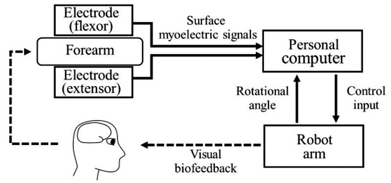 Facilitative Exercise for Surface Myoelectric Activity Using Robot Arm Control System – Training Scheme with Gradually Increasing Difficulty Level –